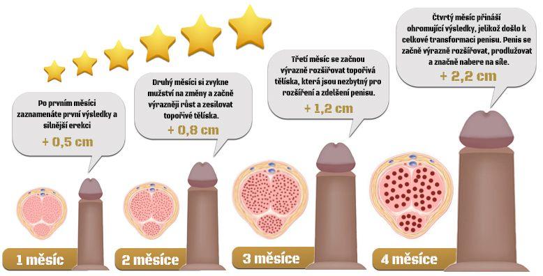 Jak fungují naše metody na zvětšení penisu